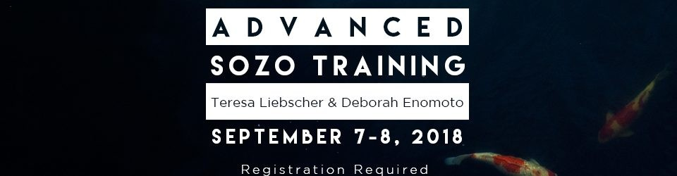 Advanced Sozo Training