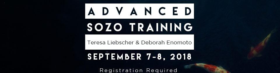 Advanced Sozo Training